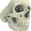 CT-Bone